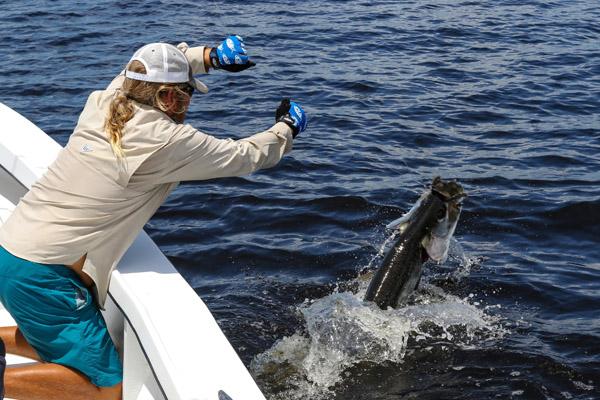 Boca grande charlotte harbor florida fishing report for Port charlotte fishing charters