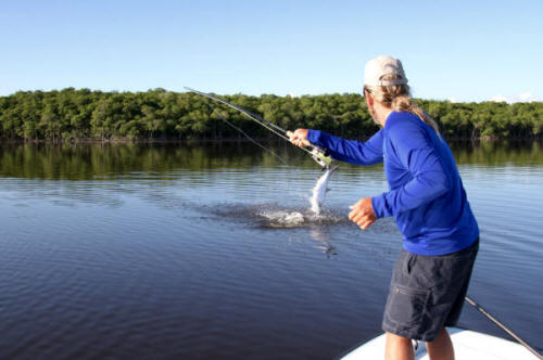 Boca grande charlotte harbor florida tarpon and snook for Tarpon springs fishing charters